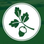 Stowford Logo